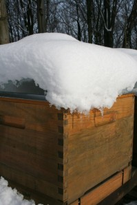 Fig 1. Snow covered hive